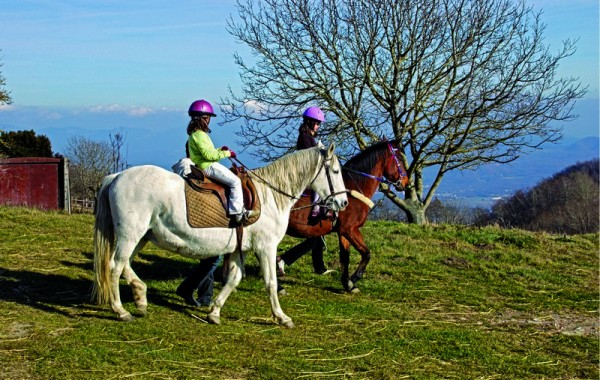 Equitació 2