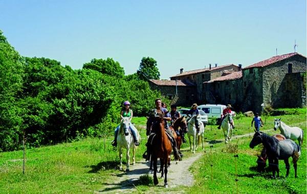 Equitació 4