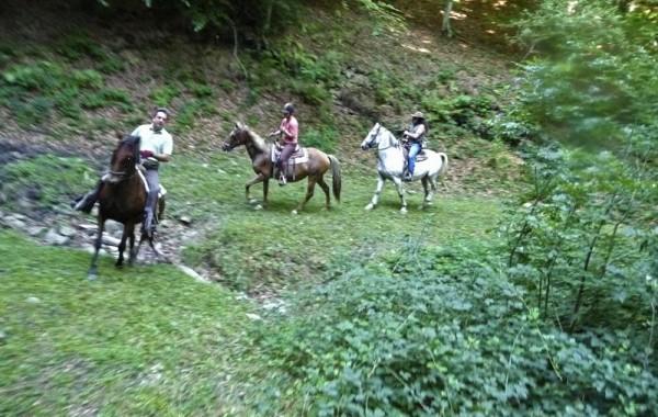 Equitació 5