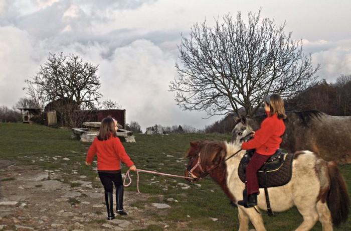 Equitació 8