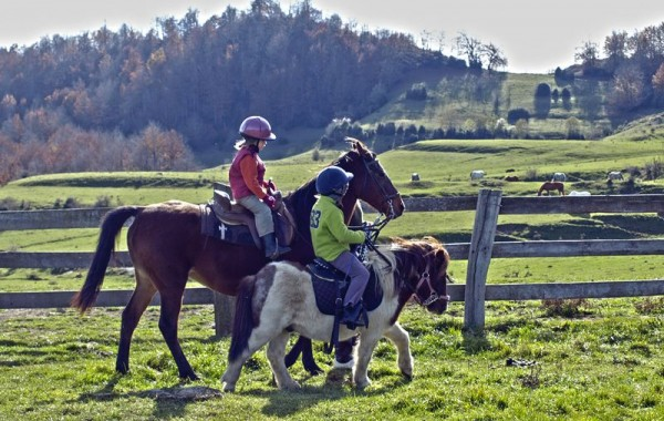 Equitació 10