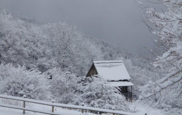 Cabana hivern